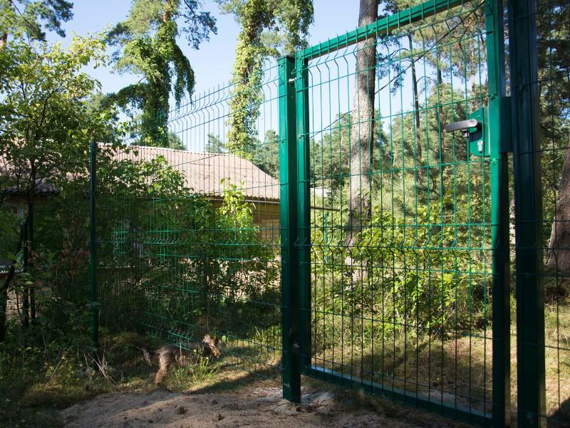 Porte piéton 2.03 m
